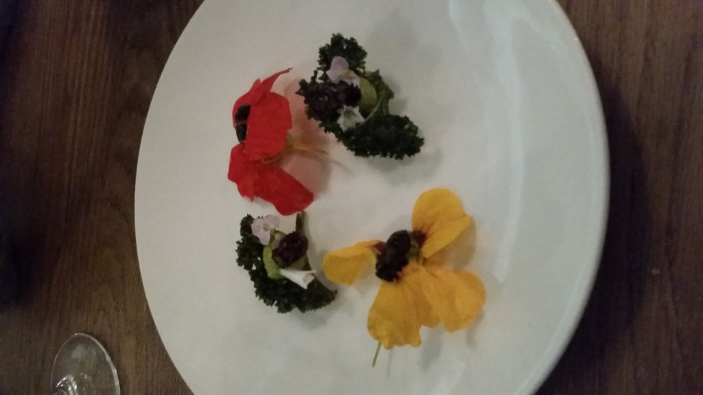 Insects, Flowers, Avocados and Crispy Kale